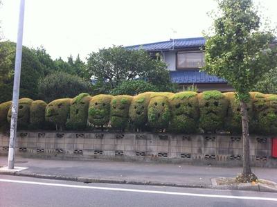 顔の植木1