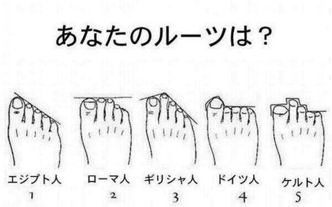 足の指の長さ5