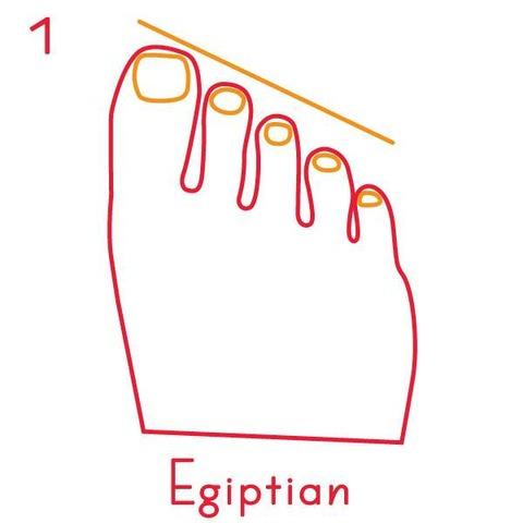足の指の長さ2
