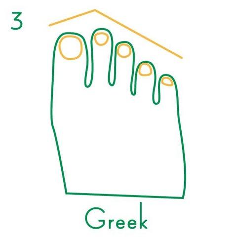 足の指の長さ4