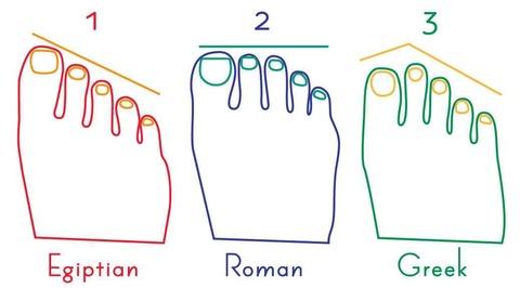 足の指の長さ