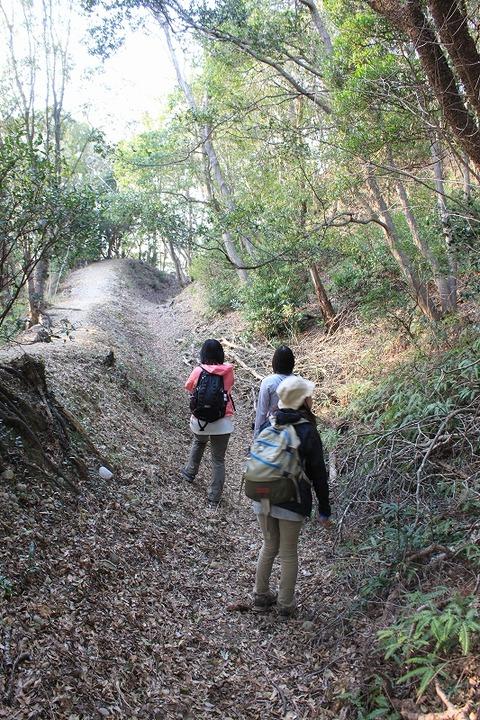 静岡遠征 (132)