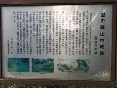 山中城 (1)