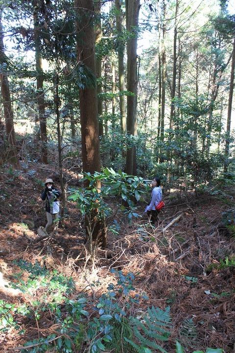 静岡遠征 (17)