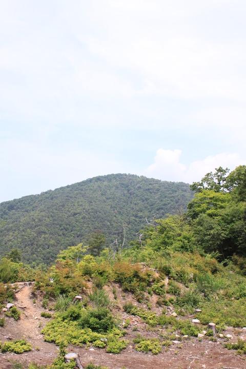 近江オフ (7)