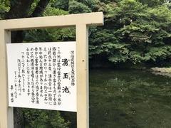 富士宮浅間大社 (3)