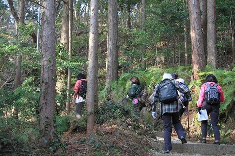 静岡遠征 (113)