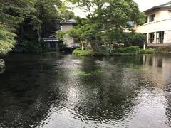 富士宮浅間大社 (6)