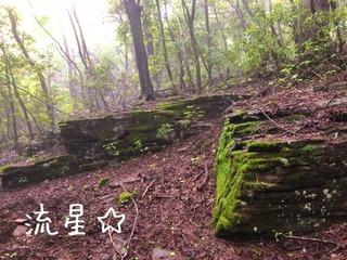 s_星が城 (2)