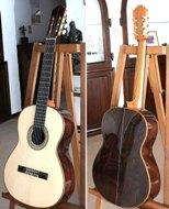 Bellucci Guitar