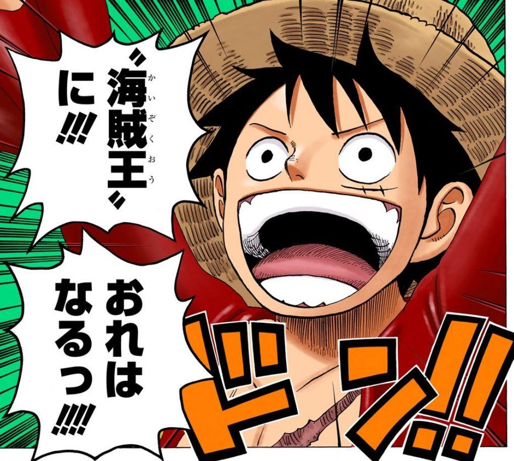 ルフィ「海賊王に俺はなる!!!」←20年経過wwwwwwww