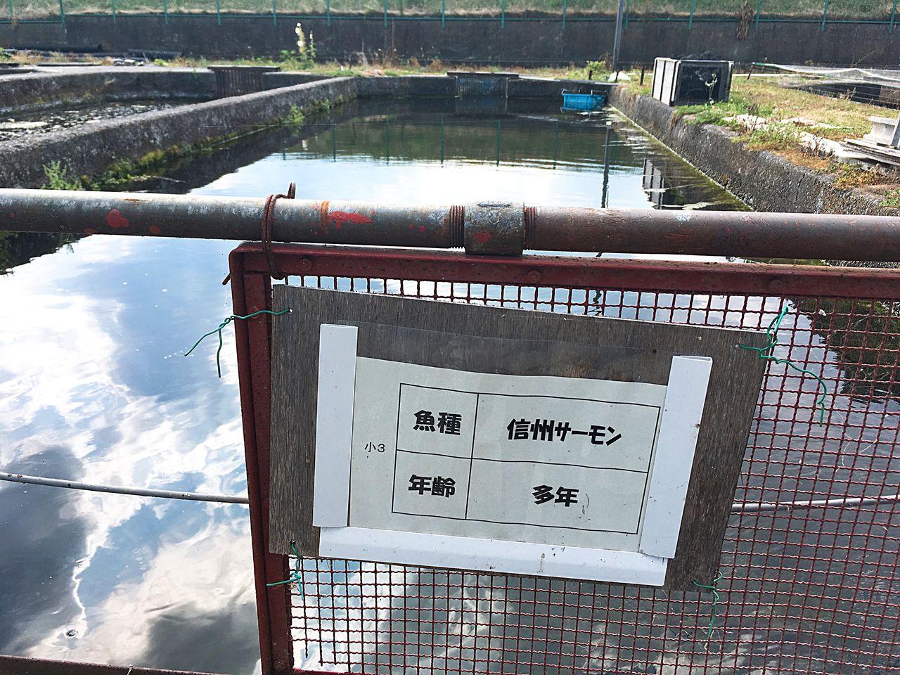長野県水産試験場