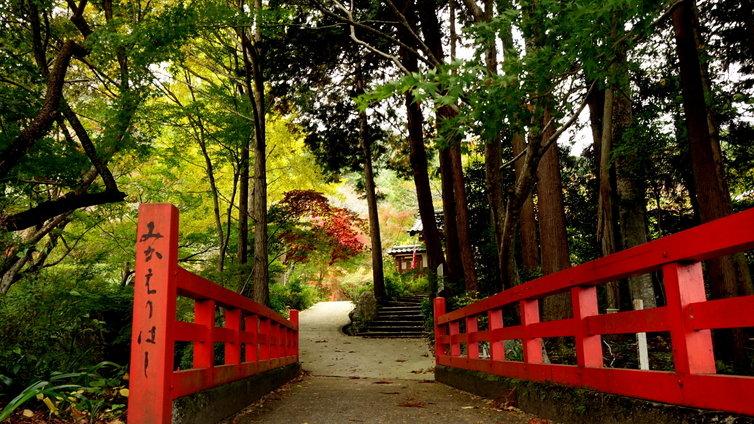 神蔵寺 2014