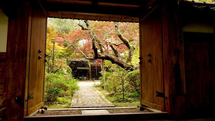 京都 紅葉名所