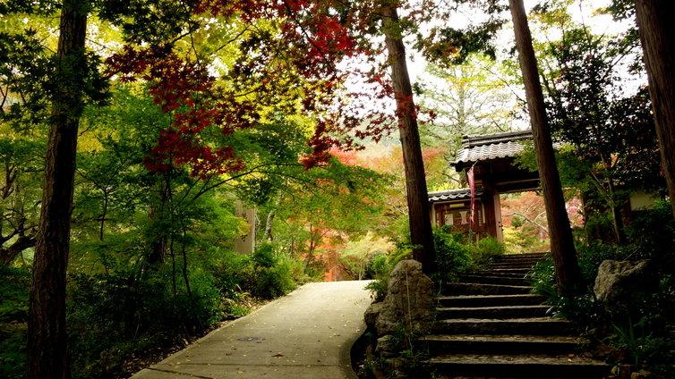 亀岡 神蔵寺