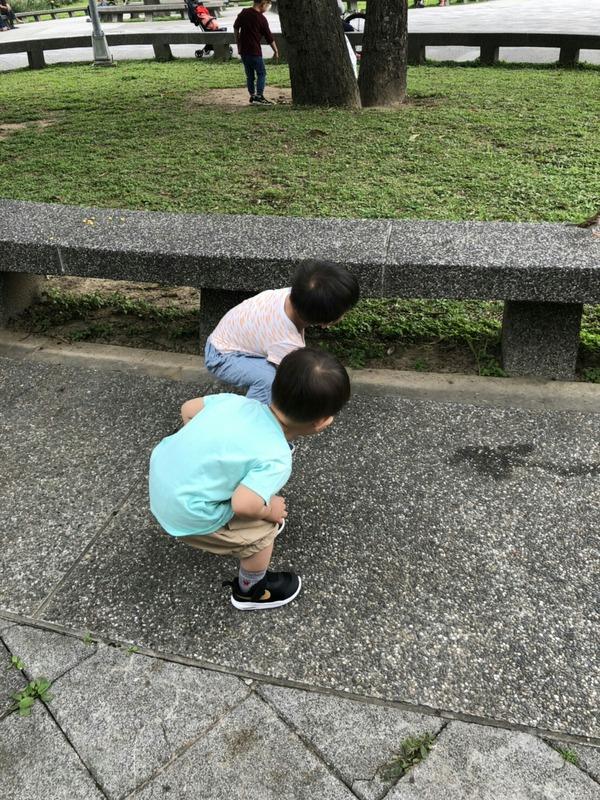バイリンガル教育 台湾