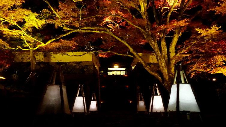 神蔵寺 ライトアップ 2014