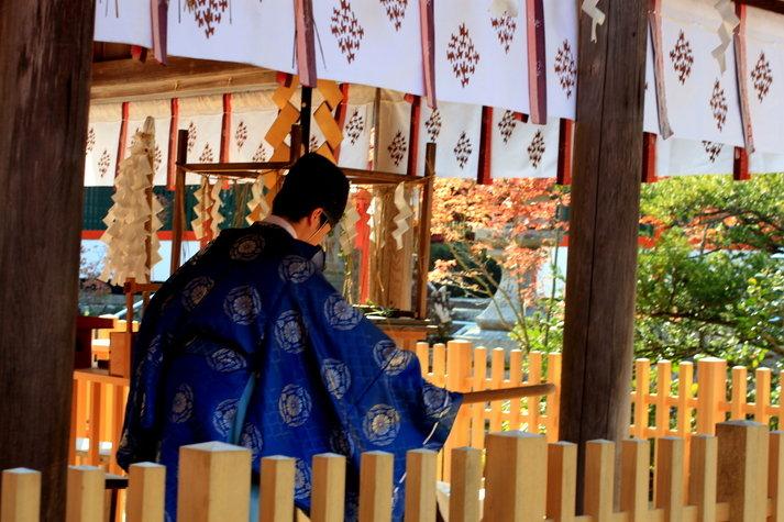 鍬山神社 七五三