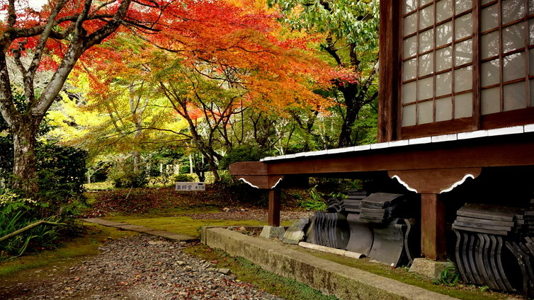 神蔵寺 紅葉 2014