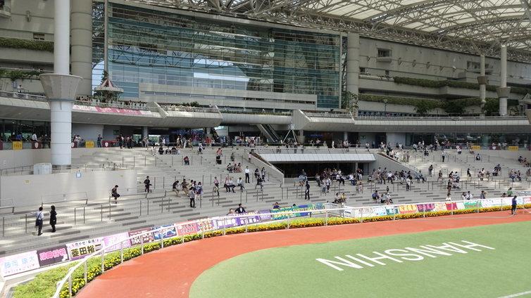 阪神競馬場 パドック