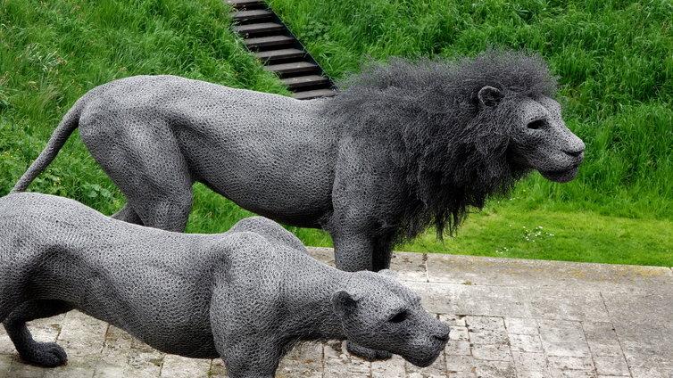 ロンドン ライオン