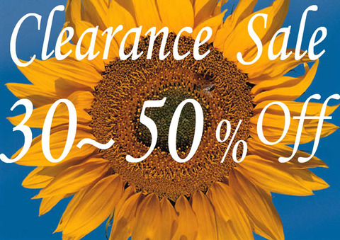 Summer_ClearanceSale_3-5