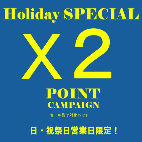 holiday Point x2 Capmpaign