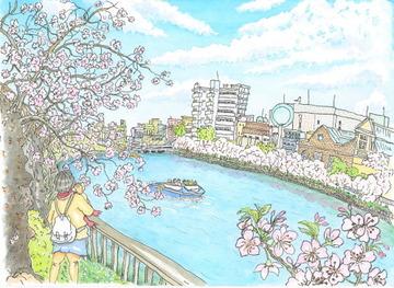500x365fuku桜ノ宮公園の桜72dpi
