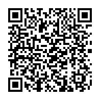 天ぷらコイン027