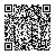 ロボニャンF型-趙雲07