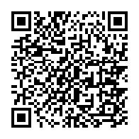 ロボニャンF型-趙雲09