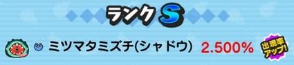SH017704