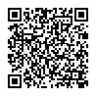 ロボニャンF型-趙雲04