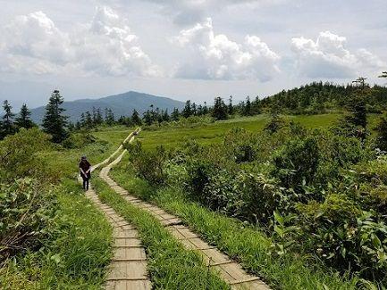 至仏山への道のり