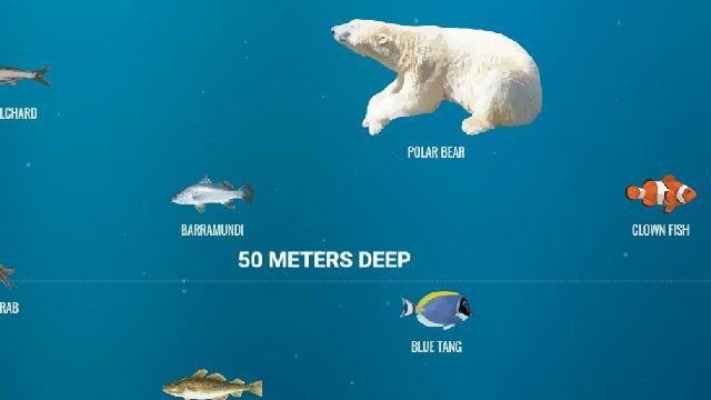 深海の最深部へとスクロールして潜っていける、超縦長なウェブサイト