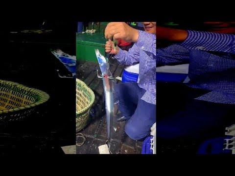 金属っぽい輝きを持った魚が釣り上げられる