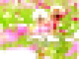 【画像】 インスタ蝿によるとんでもない迷惑行為の瞬間を激写・・ 告発画像に衝撃走る