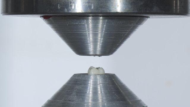 人間の歯はどれくらい強い?油圧プレス機で粉々になるまで押しつぶしてみた実験映像
