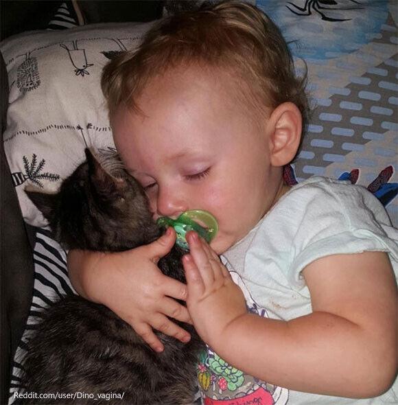 抱き合って眠るの。一家に救われた猫は毎日赤ちゃんの添い寝役をかって出た