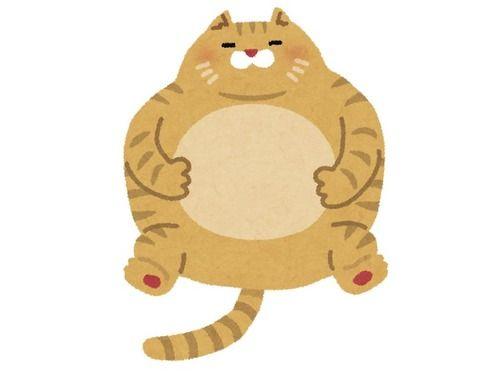 「太った猫のダイエットに成功したよ…ビフォー&アフター写真を見てほしい」