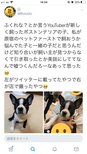 fukurena-dog2