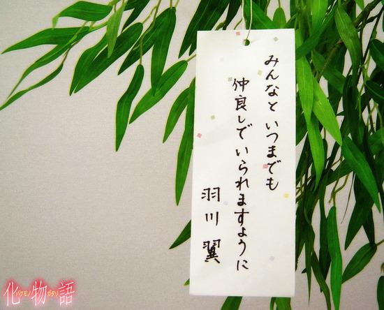 tsubasa_wish