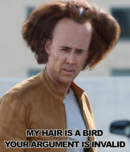 nicolas-cage-hair-is-a-bird
