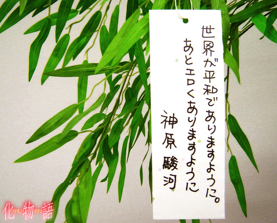 suruga_wish