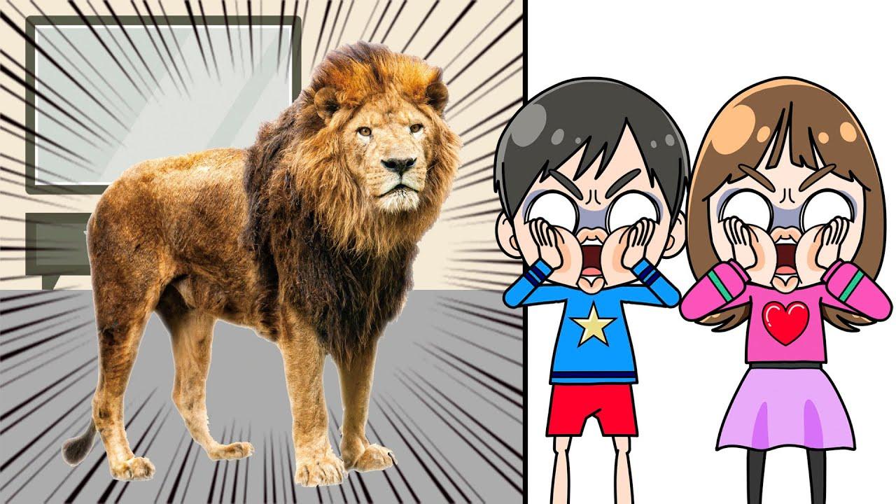【キッズライン】テレビから動物が逃げ出した! こうくんねみちゃんアニメ Really want to have pets Animals jump out of the TV
