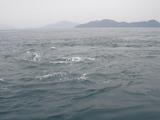 潮流体験2