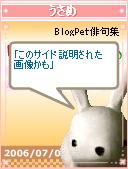 うさめ俳句060709