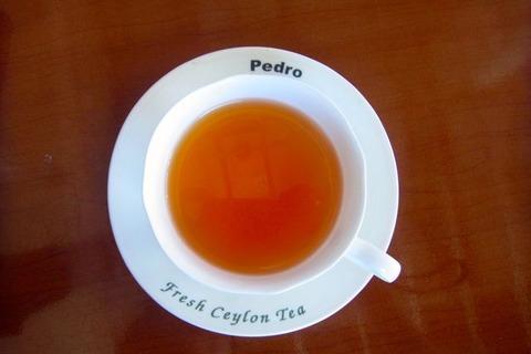 ペドロ茶園にて