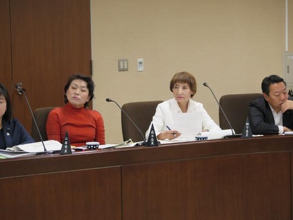 決算委員会で下水道料金への消費税転嫁など質す