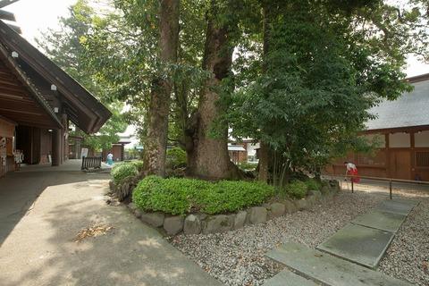 20140522-IMG_0228
